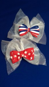 Bows with Chiffon Backing